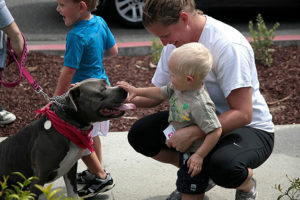 Can pit bulls be safe with kids?
