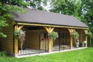 Choosing a Proper Dog Kennel for Your Pit Bull
